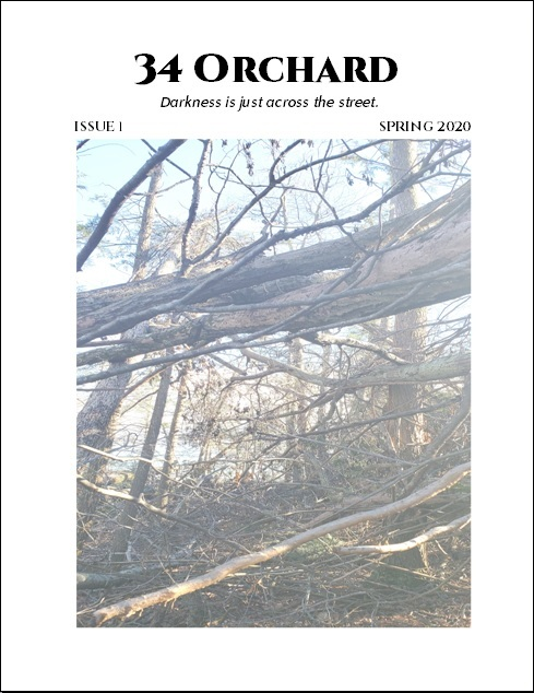 ISSUE 1 SAMPLE COVER
